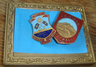 BCFA and TFA pins