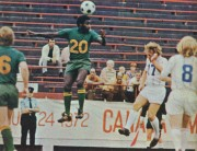 Toronto Metros at New York Cosmos